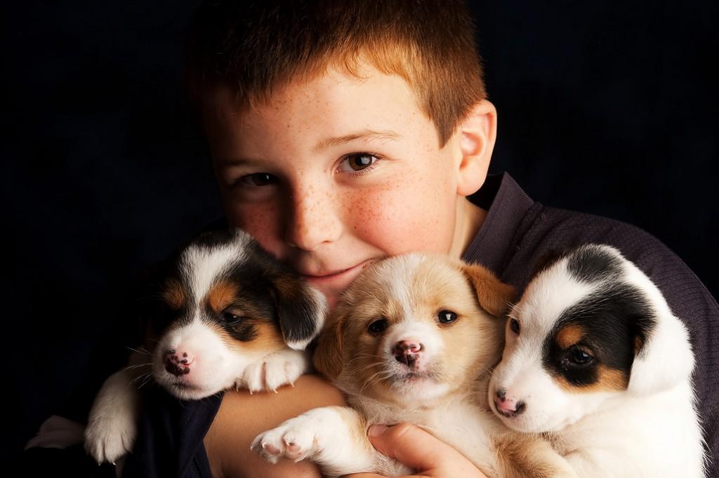Pups 3