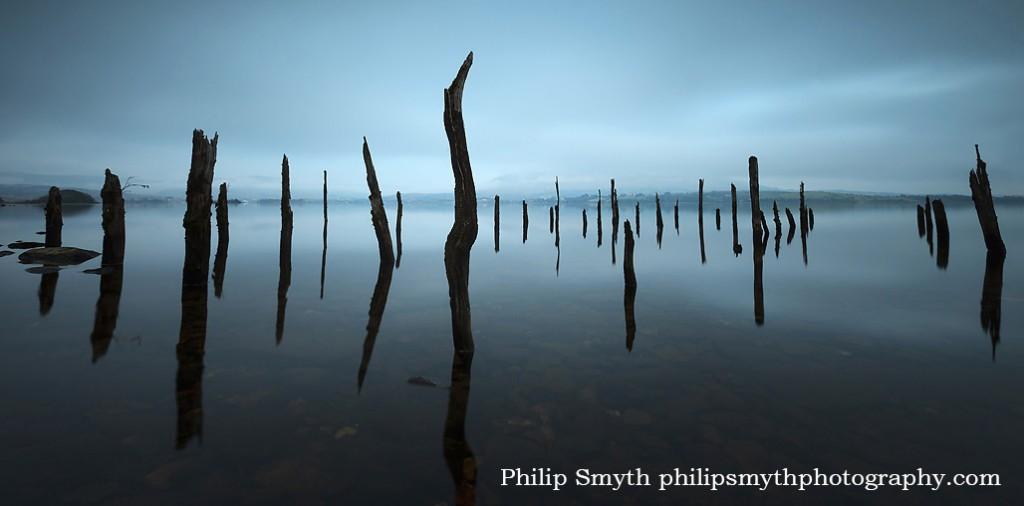 Philip Smyth-LS-1701-02